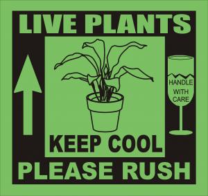 LIVE_PLANTS_KEEP_COOL_colour